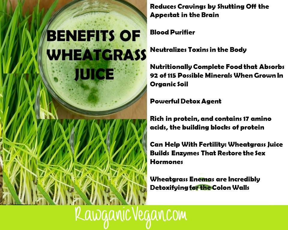 wheatgrassbenefits